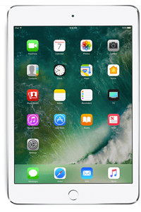 Product: iPad mini 4